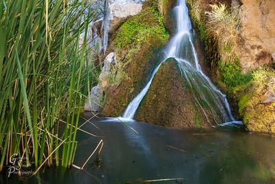 Darwin Falls Oasis