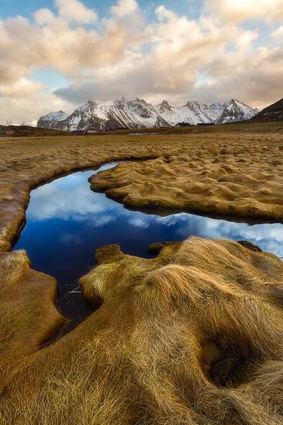 Photo of lofoten, norway, mountains, grass, stream water