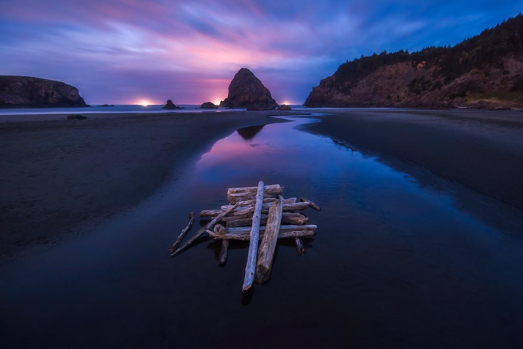 Photo of drift wood on whaleshead beach along the Oregon Coast