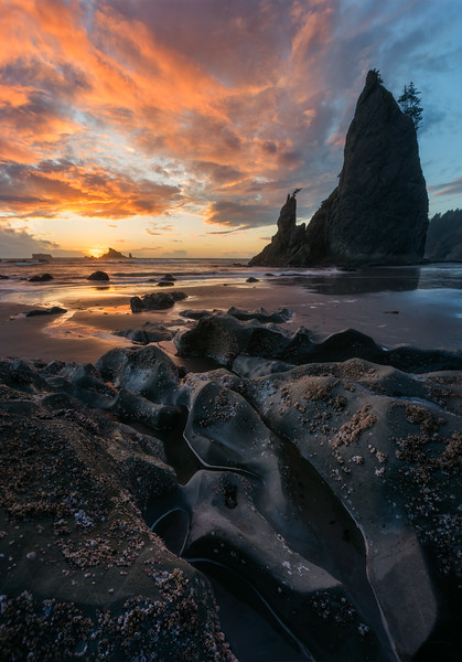 Rialto Beach, Olympic Peninsula - Washington
