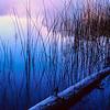 Horseshoe Lake Dawn