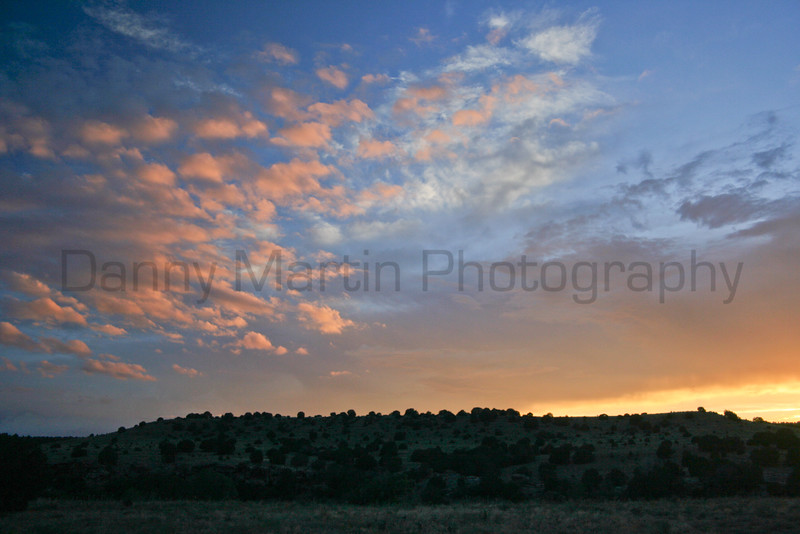 Sunset over juniper.<br /> Comanche National Grassland, Baca County, Colorado.
