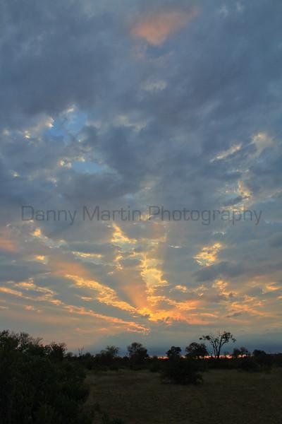 sunrise.  Kruger National Park, South Africa.