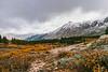 Ptarmigan Lake trail<br /> Chafee County, Colorado (HDR)