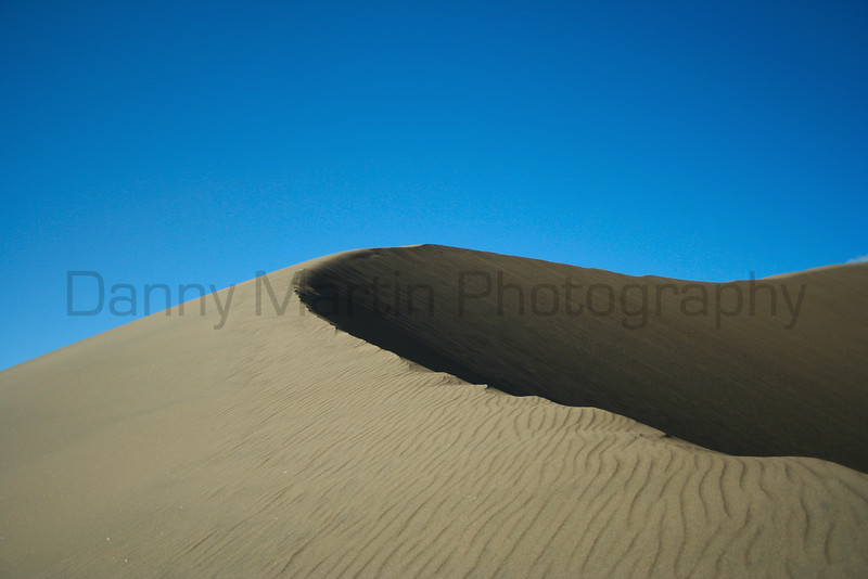 Dune in the afternoon sun.  Great Sand Dunes National Park, CO.