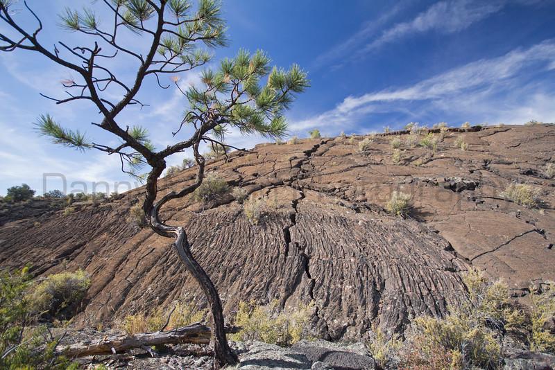 Lava Falls, El Malpais National Monument, New Mexico.