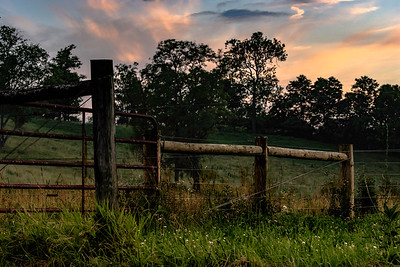 Country Life - sunset