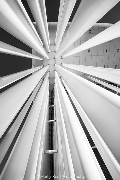 Philharmonie vertigo