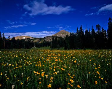 Diamond Lakes in Indian Peaks Wilderness