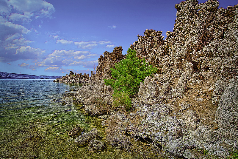 "Mono Lake<br /> <a href=""http://rickwilliamsphotography.blogspot.com/2012/11/mono-lake.html"">http://rickwilliamsphotography.blogspot.com/2012/11/mono-lake.html</a>"