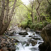 Salmon Creek - Big Sur, CA