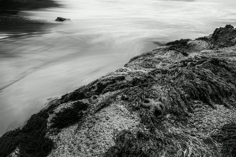 Starfish and slow shutter waves