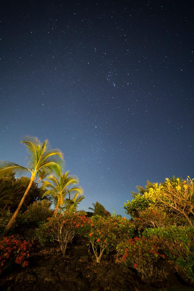 Stars at Kona