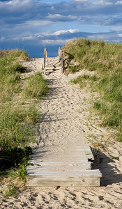 Town Neck Beach Path #2 6606