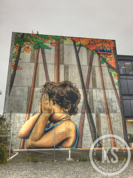 Hide & Seek Mural in Christchurch, New Zealand