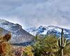 Sabino Canyon in Winter, Tucson, Arizona