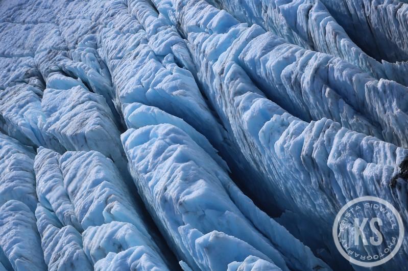 Glacial Fins, Franz Josef Glacier, New Zealand
