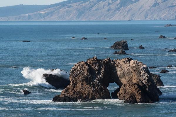 Bodega Bay6254