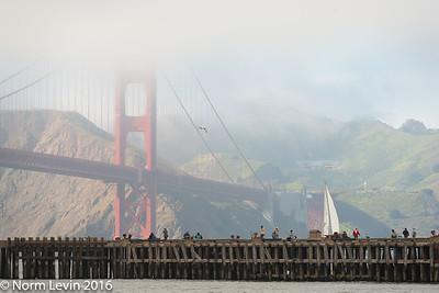 Golden Gate Bridge-4298