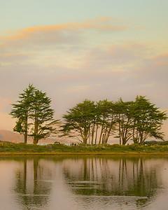 Angel Island-6223