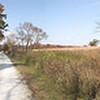 Prairie Road, Shaw Nature Reserve