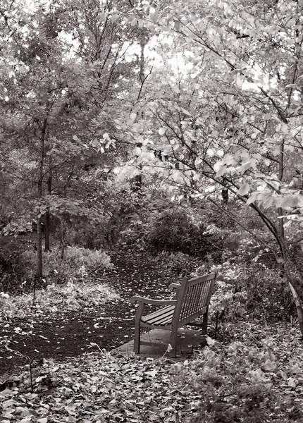 Mo Botanical Garden.