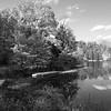 Wolf Lake, Shaw Nature Reserve