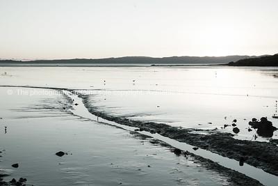 Coromandel Peninsula (85 of 91)