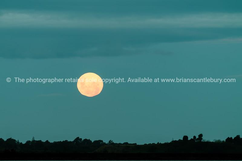 Orange color moon in dark sky