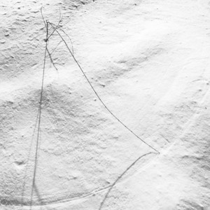 Snow Pendulum