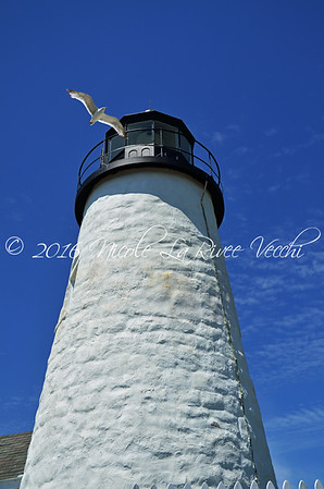Pemaquid Point Light, located in Bristol, Maine