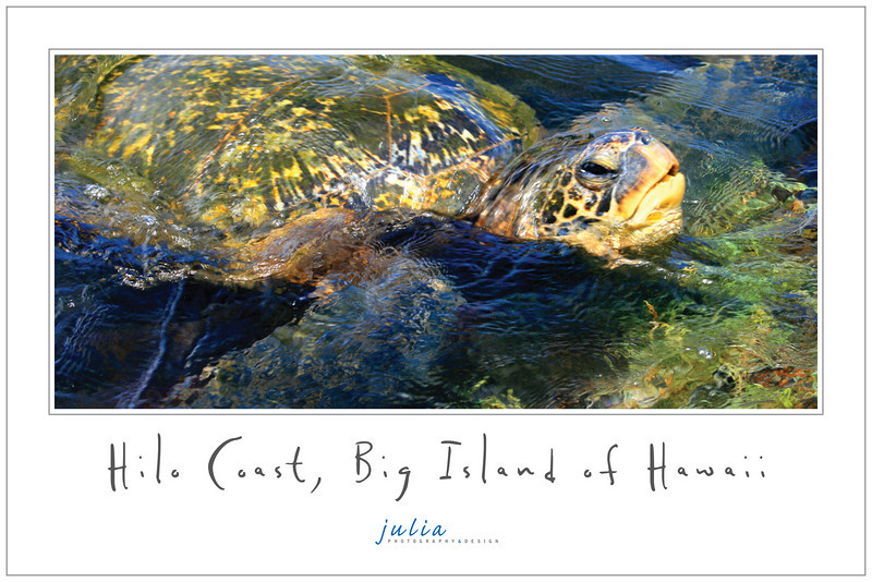 Poster 18x12<br /> Hilo Coast, Hawaii. September 2008.<br /> Photography and design by Julia Held. Poster No.