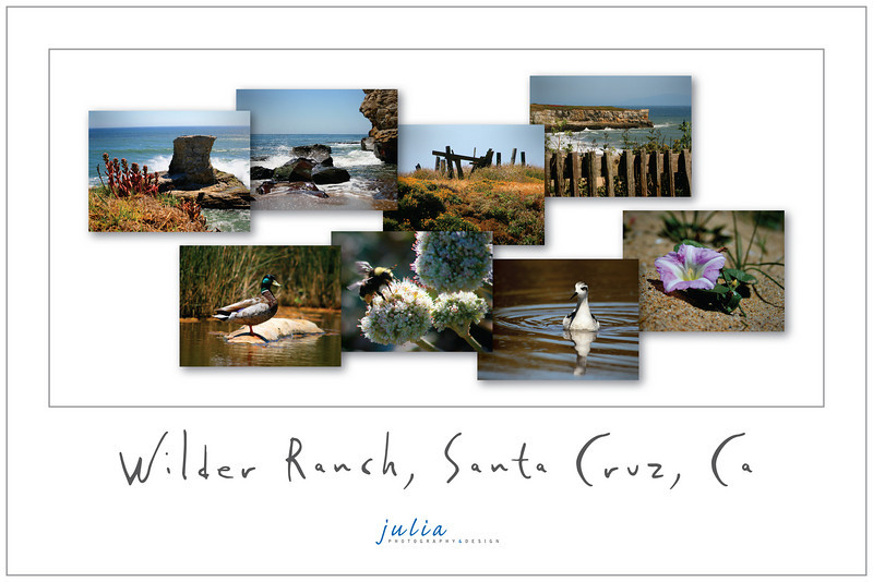 Poster 18x12<br /> Wilder Ranch, Santa Cruz, California. September 2008.<br /> Photography and design by Julia Held. Poster No.