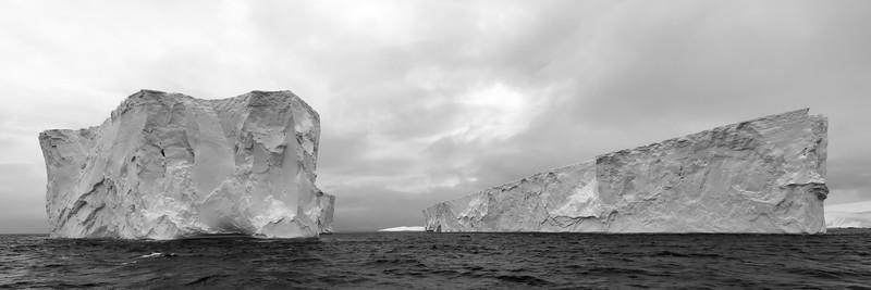 Antarktis Januar 2019 - Eisberge aus der Wedelsee treiben in der Bransfield Strait