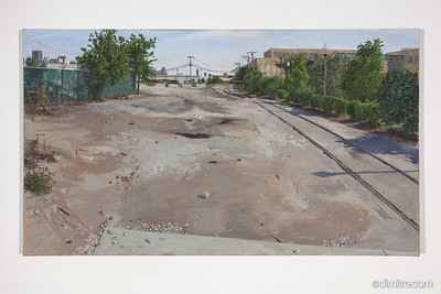02_Paczos_Goose_Island_looking_south,_2011,_47x27