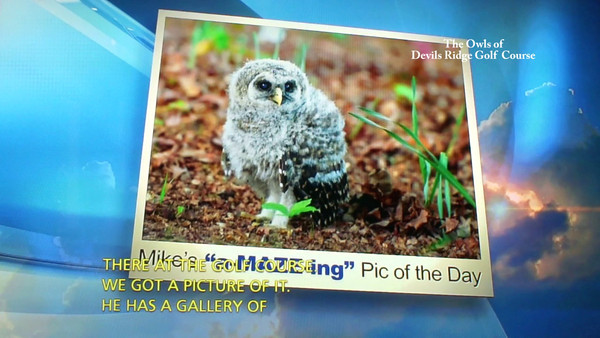 This is a short clip I recorded from Mike Maze WRAL's Amazing PIC of the DAY!! Mike Maze A-MAZE-ing PIC of the day - video