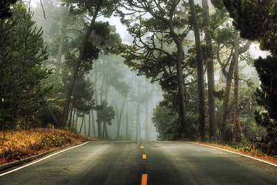 Monterey, California 17 Mile Drive Early foggy morning