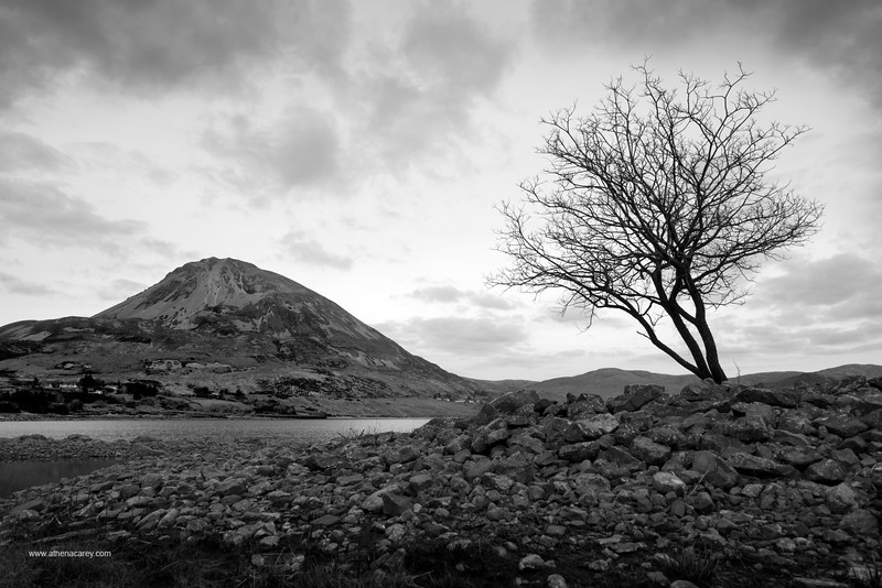 Mount Errigal 5223