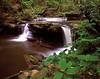 Lower Clinch Falls
