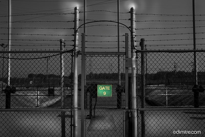 Gate Nine 9386