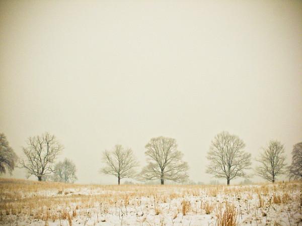 "Espenshade Project ""Winter"""