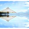 8x10 beach umbrella CURVES N SAT
