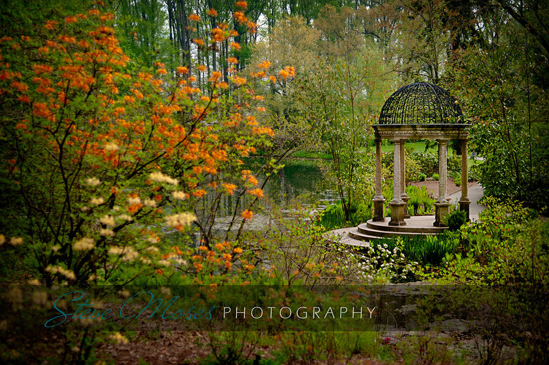 """Entering The Garden""<br /> Location: Longwood Gardens, Kennett Square, PA"