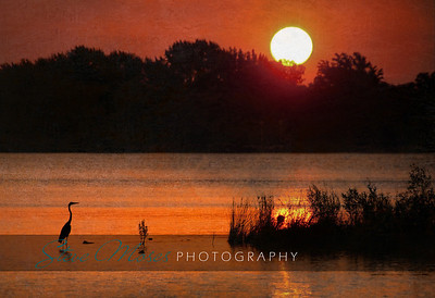 """Tranquility"" 2011 Print of the Year - HVPPSNY Location: Door County, Wisconsin"