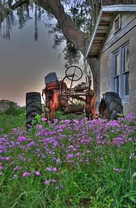 """""""Tractor1""""  Wildwood, FL"""