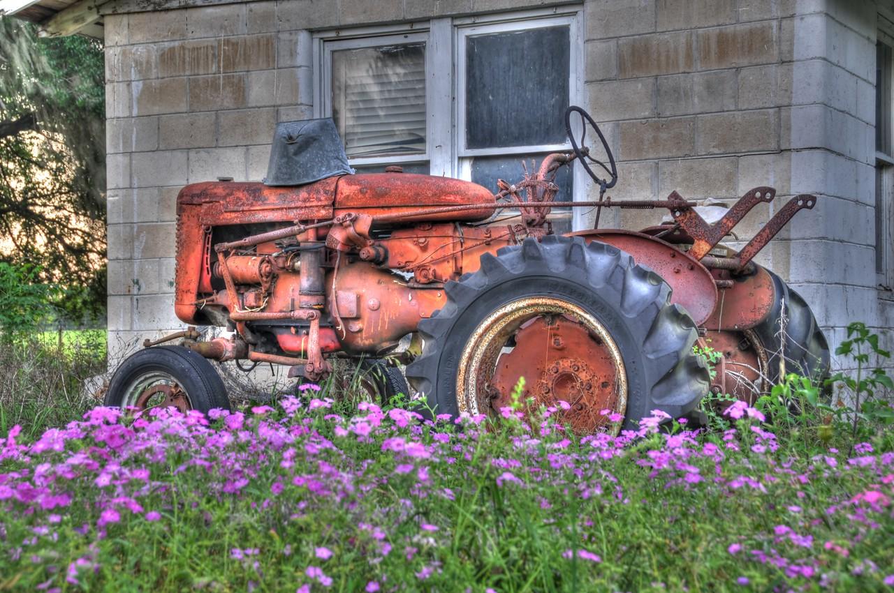 """""""Tractor2""""  Wildwood, FL"""