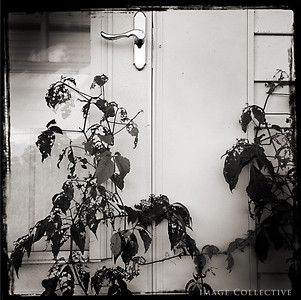 A detail Of Lacey's front door.