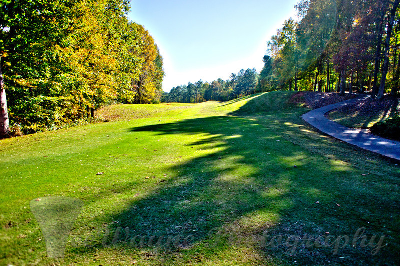Hole 3 - tee box. If you have any issues or questions about buying any of these prints or other merchandise, please send me an email - grimes@teewayne.com