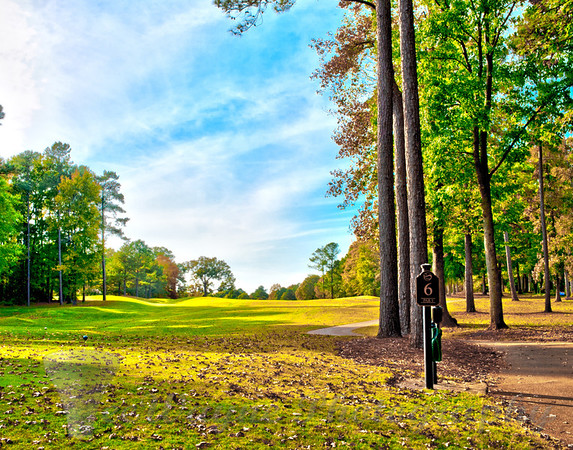 Wide open fairway for this tee shot on hole #6. If you have any issues or questions about buying any of these prints or other merchandise, please send me an email - grimes@teewayne.com