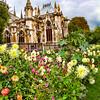 notre dame garden party IMG_1086 extr clr blst